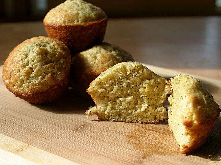 zucchini cake with lemon and poppyseed recipes dishmaps zucchini cake ...