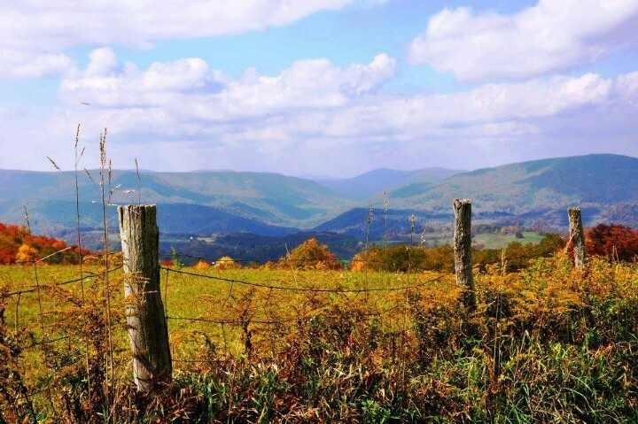 Canaan Valley Wv Wild Amp Wonderful West Virginia Pinterest