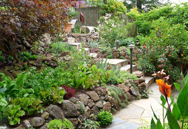 Love this edible garden landscaping ideas pinterest for Edible garden design