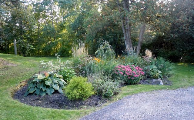 low maintenance flower garden garden pinterest