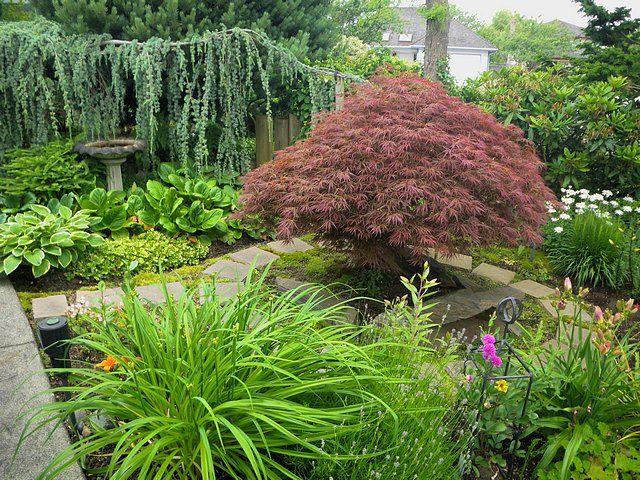 Secret garden ideas diy pinterest for Secret garden designs