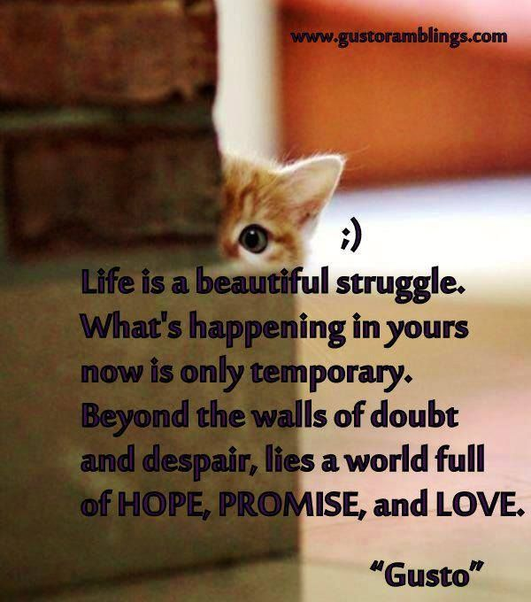life is a beautiful struggle means something to me