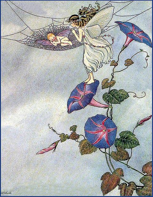Vintage Fairy Illustration--Morning Glory Baby--Ida Outhwaite