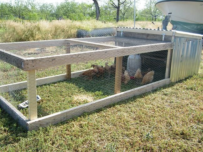 Mobile chicken coop chicks hens amp cocks pinterest