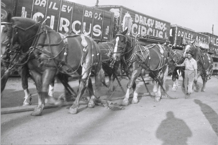 Dailey Bros Circus 1960