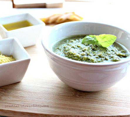 Poor Man's Vegan Basil Pesto | Recipe
