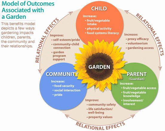 Outcomes of student gardening programs School Garden