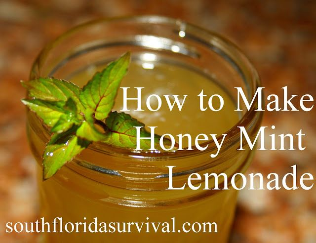 leaves of mint 1 cup lemon juice METHOD 1. Warm water, honey and mint ...