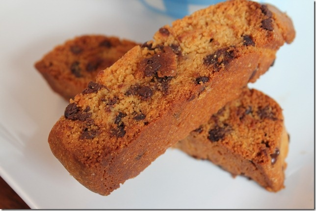 Chocolate Peanut Biscotti Recipe — Dishmaps