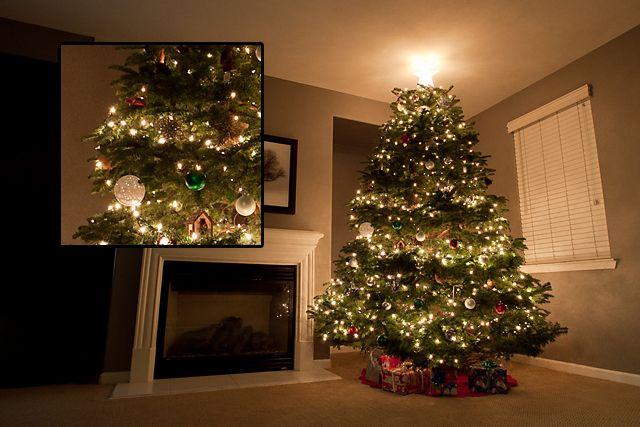 Camera Settings for Christmas Tree Lights