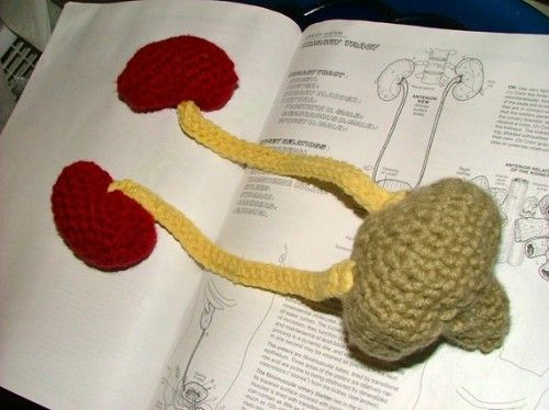 Crocheting Gone Wrong : Crocheted Urinary Tract Crochet Gone BAD! Pinterest