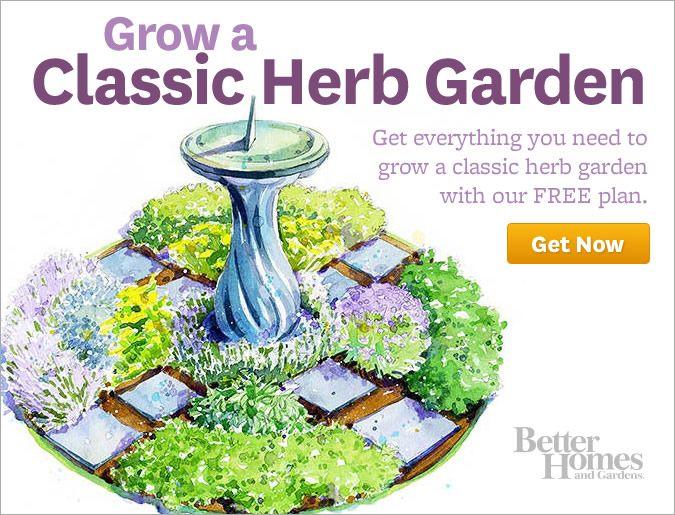 Herb garden plan Garden Pinterest