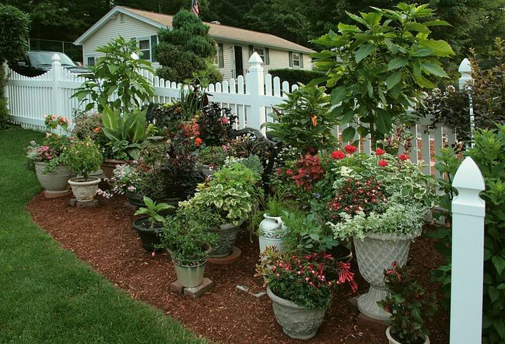 Container garden large garden decor landscaping pinterest - Large container gardening ...