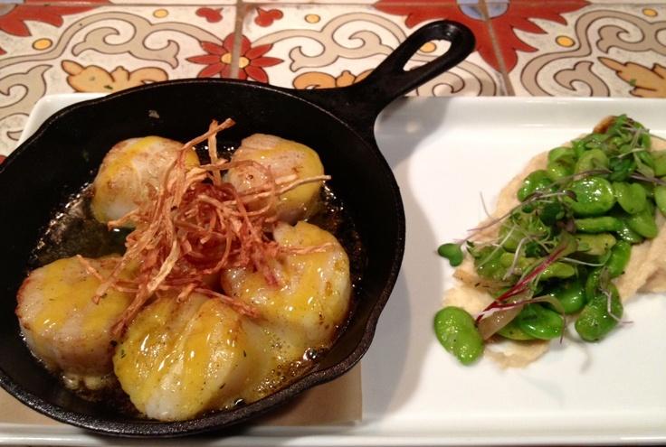 ... , parsnip purée, sautéed fava beans, celery root chips #bocabistro