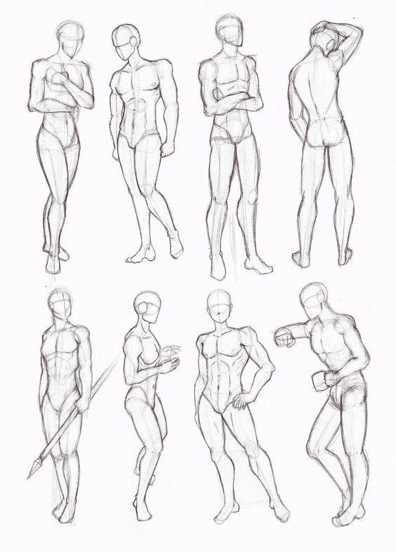 Standard Proportions of the Human Body  MakingComicscom