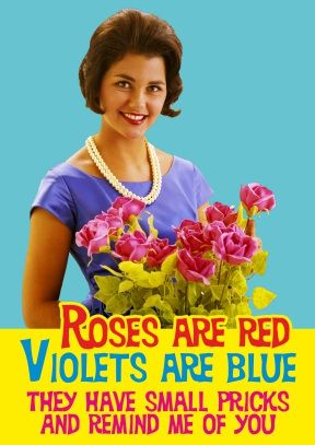 rude and funny valentines day cards