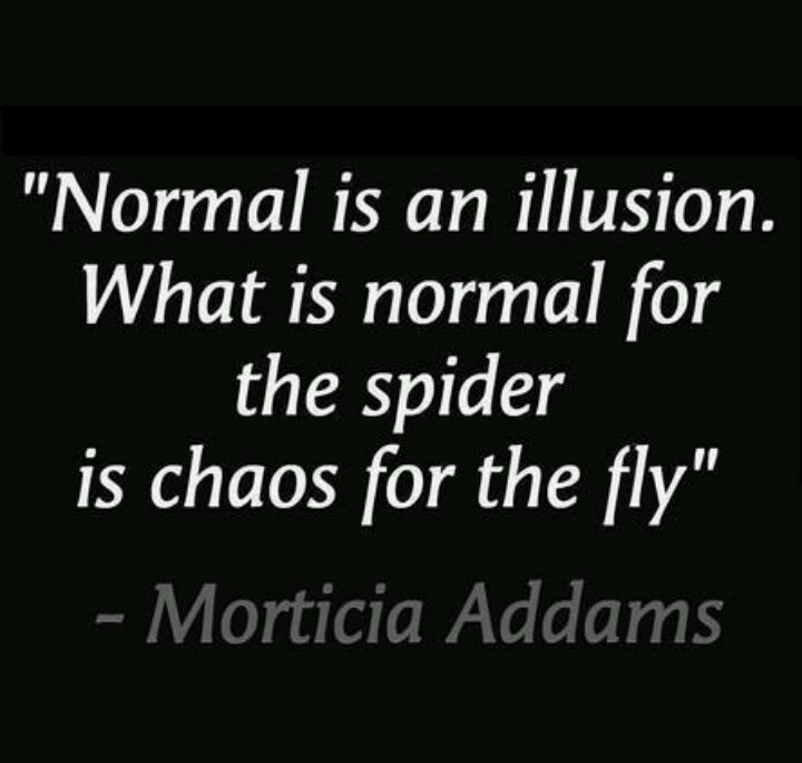 Addams Family Quotes & Sayings & Signs Pinterest