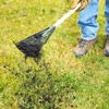 lawn, and lessening the need for fertilizer. Spread a thin layer of