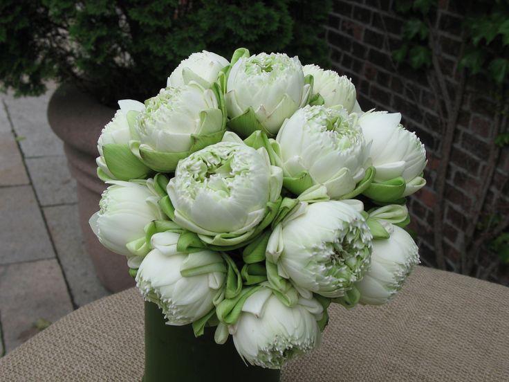 Wedding Bouquets Lotus Flower : Lotus bridal bouquet wedding ideas