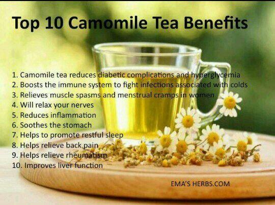 Chamomile tea benefits   Healthy Ways