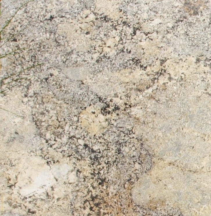 Sage Brush | Granite Slabs | Pinterest