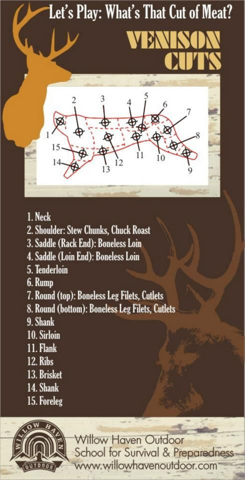 how to cook different cuts of venison