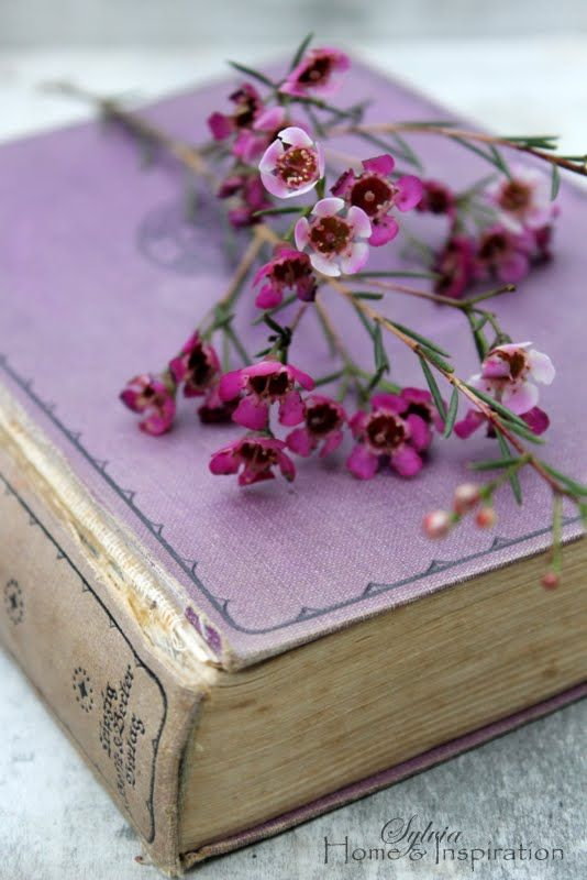 Beautiful Purple Cover Book - Can not read the title.
