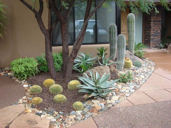 Desert Small Backyard : Arizona Landscaping Ideas, Id do this with sand instead of mulch