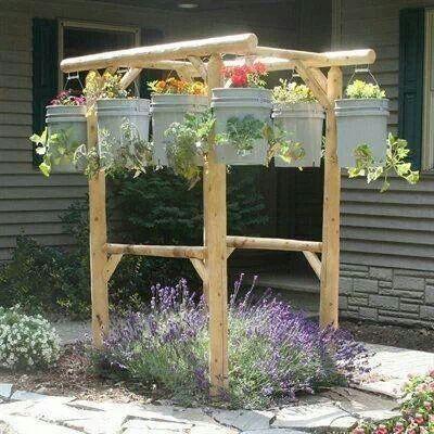 Hanging bucket garden vegetable garden pinterest for Hanging vegetable garden ideas