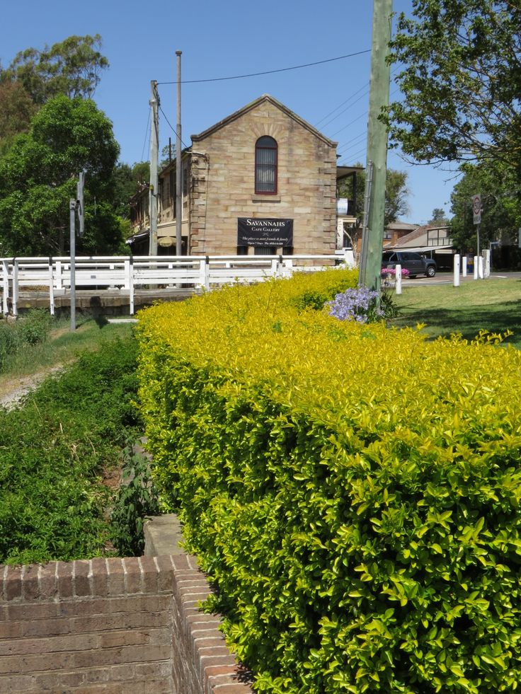 Morpeth Australia  city pictures gallery : Morpeth New South Wales Australia | haunted | Pinterest
