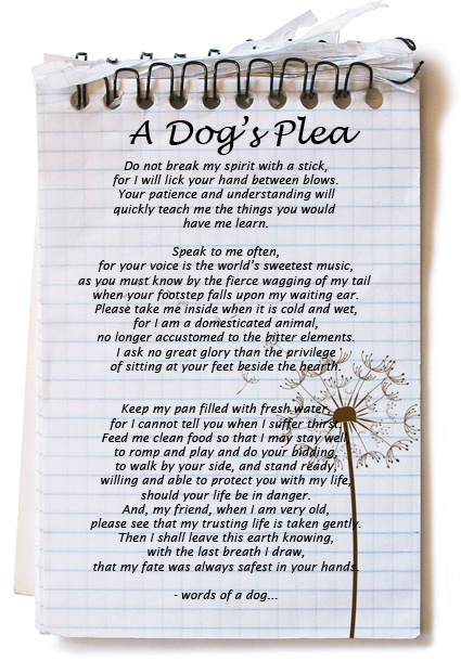 Ago a dog s plea susan k 1 year ago a dog s plea facebook twitter