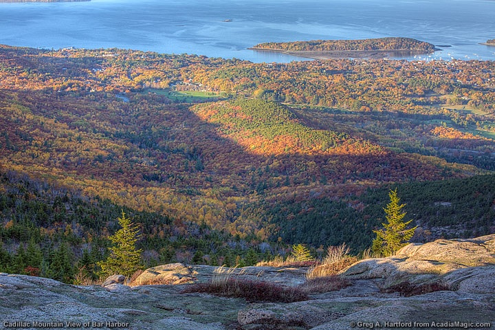fall in bar harbor maine viewed from cadillac mountain in acadia. Cars Review. Best American Auto & Cars Review