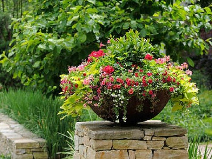 Easy Gardening Ideas Pinterest Photograph Simple Container
