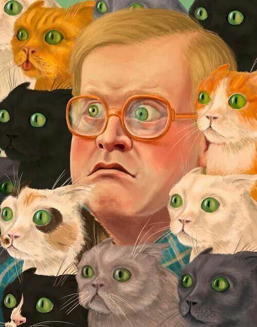 Bubbles Trailer Park Boys Cat Meme