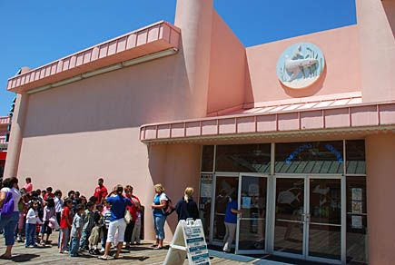 Aquarium Jenkinson 39 S Boardwalk Family Trip Pinterest