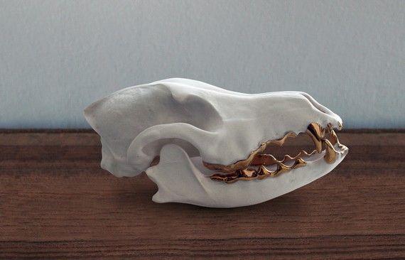 Porcelain coyote skull with 14 k gold teeth by Porcelainskulls, $175.00