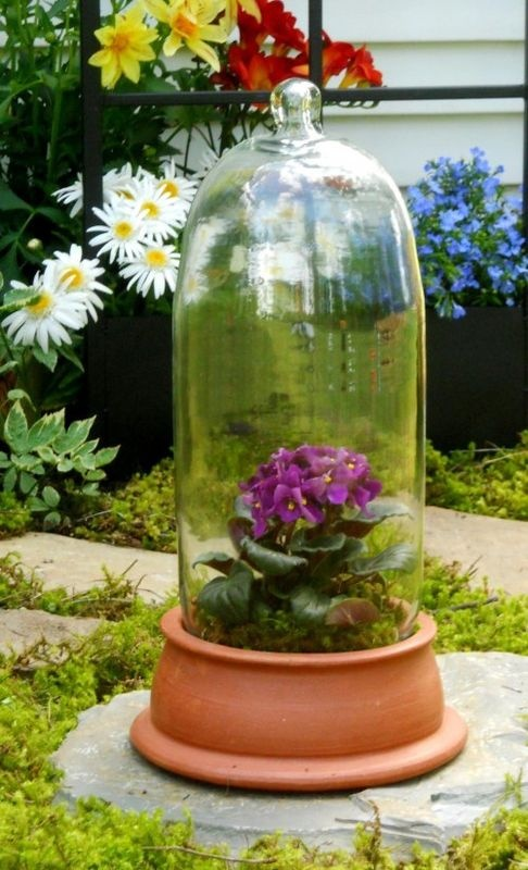 H potter terra cotta glass cloche terrarium bell dome for Cloche verre decorative