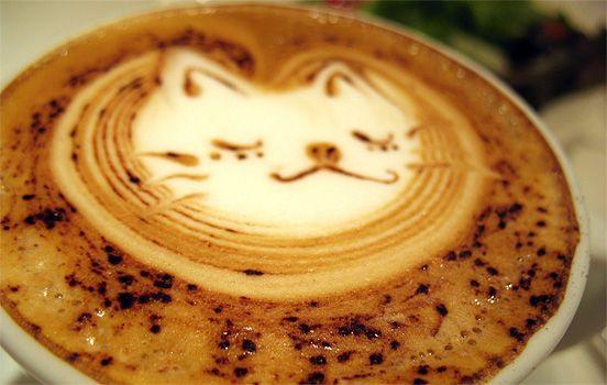 Cat - Coffee Foam Art