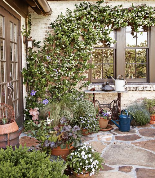Clematis and confederate jasmine climb a brick wall adjoining this back patio.