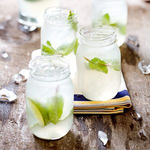 Combine ginger beer, lime juice, and vodka in a large pitcher. Add mint leaves and pour over ice in glasses. Garnish with lime wedges.