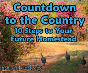 10 steps to homesteading!