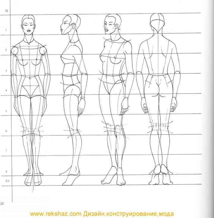 the human figure dover anatomy for artists pdf