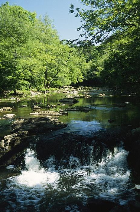 Waterfalls on the Eno River  Eno River State Park  North Carolina