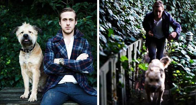 Ryan Gosling and his dog. Pretty wonderful.