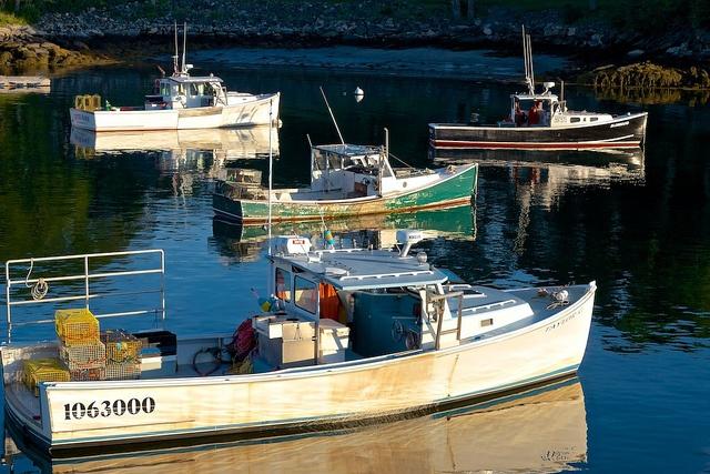 harbor by velocity635, via Flickr