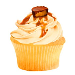 Moosetracks Cupcake