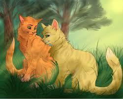 Firestar And Sandstorm Warrior Cats Wallpaper