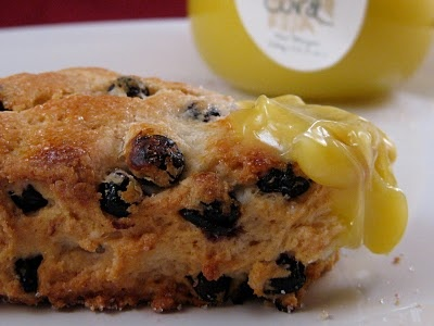 Meyer Lemon and Blueberry Scones using our Lemon Curd