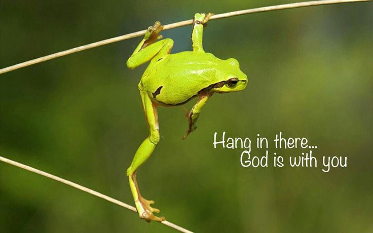 It is Monday, but God is the branch I'm hanging on!!