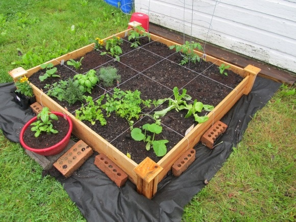 My first raised bed square foot garden! | Food and Recipes ...